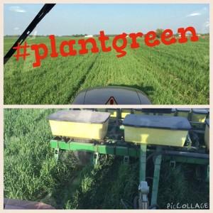 planting into cc