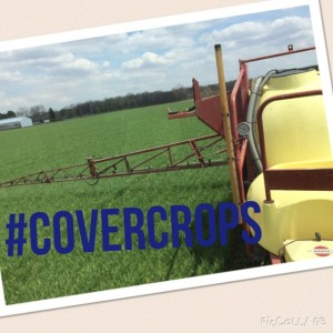 spraying cover crops